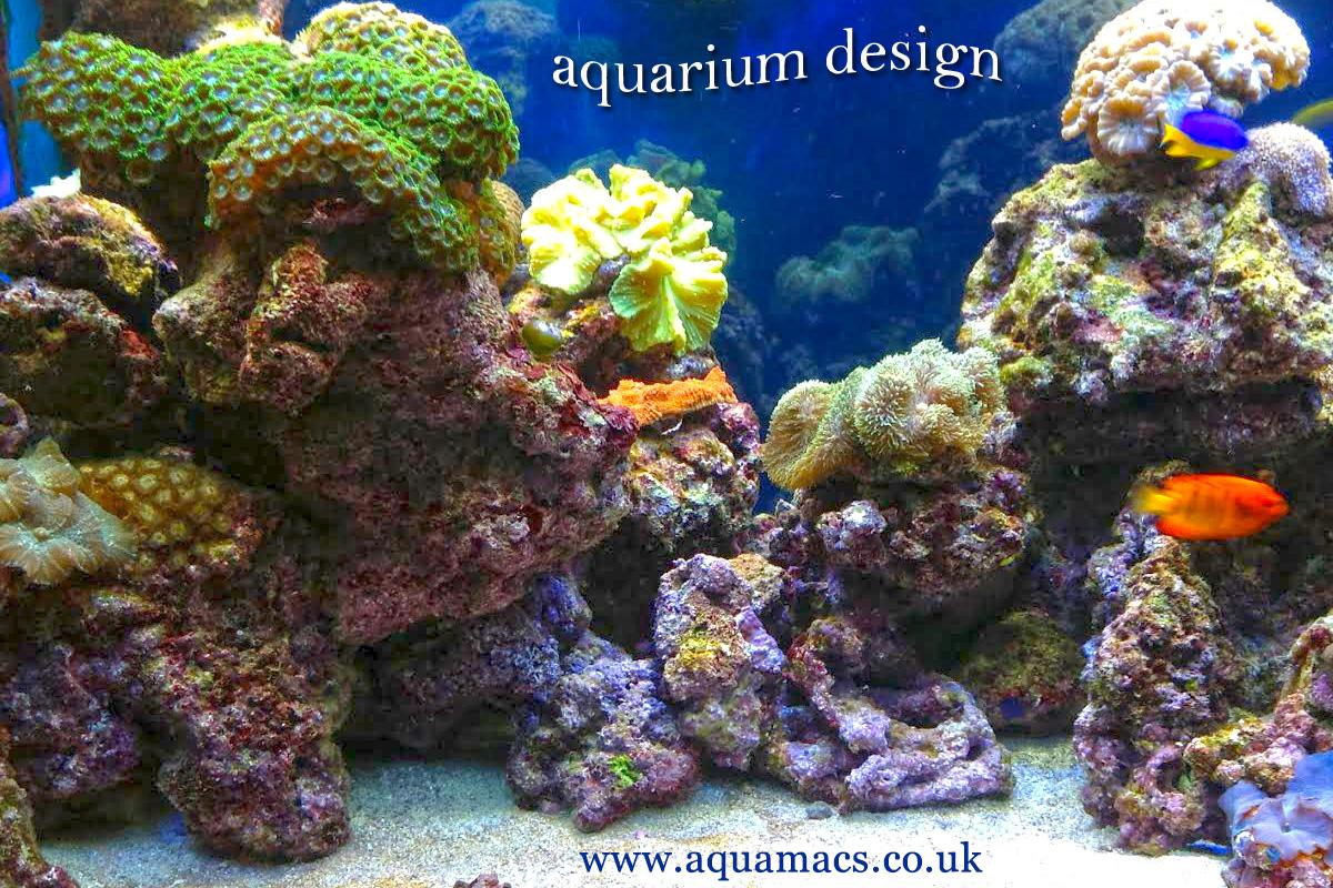 Aquarium Design And Manufacture Uk From Aquamacs